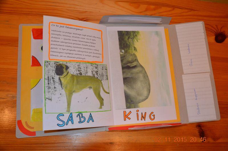images/Galeria/lapbook/DSC_0021