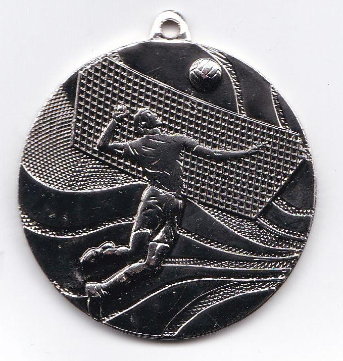 images/Galeria/siatkapowiatfinal17/medal
